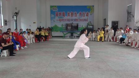 太乙游龙拳第一路教学视频(反面)