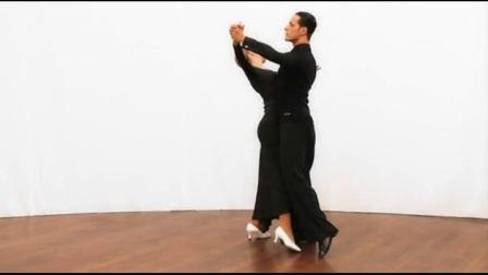 维也纳华尔兹左旋转硕士教材云龙舞蹈