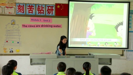 外研版(三起)小学英语六下Module3  Unit 2 The cows are drinking water.广西粟琴琴