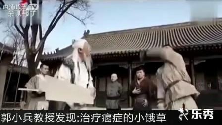 乐秀视频第74部  功夫