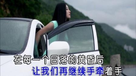 张烁-蓦然回首 红日蓝月KTV推介