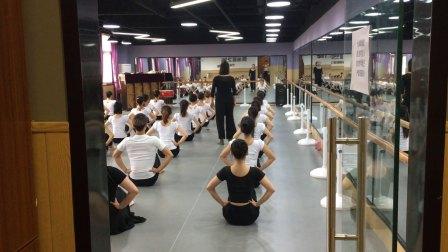 河南省星之海艺术培训中心(舞蹈师资班)中国舞蹈家协会考级教材第四版
