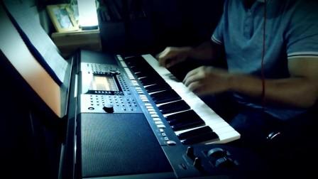 电子琴演奏《你不来我不老》