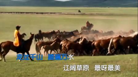 哈布尔 - 中国美草原美2018