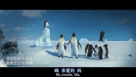 快乐的大脚(片段)企鹅意外闯入人类世界、机智传到信息