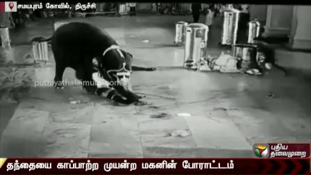 Tamil  தந்தையை காப்பாற்ற முயன்ற மகன்... மனதை உலுக்கும் காட்சிகள்...