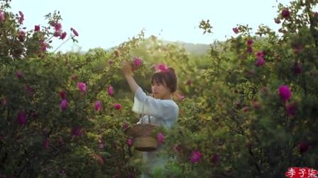 我在缤纷花食, 悄悄挖掘玫瑰的不同吃法截了一段小视频