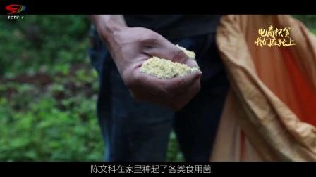 扶贫路上——来自沐川县的电商扶贫故事(上) 超清(720P)