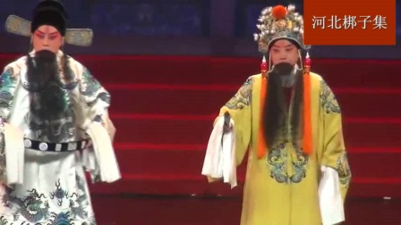 河北梆子《辕门斩子》选段国家一级演员王琳名家名段演唱会演唱