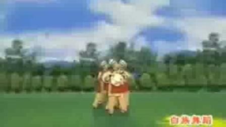 中老年民族舞-白族舞蹈《蝴蝶泉边》