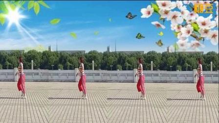 藁城飞扬舞广场舞 无限 排舞 正面
