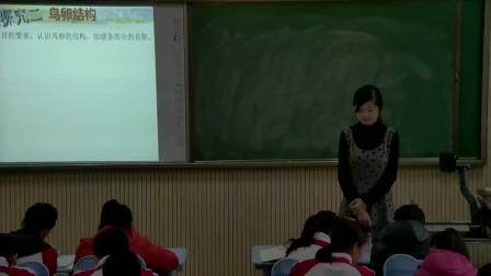 初中生物人教版八下《7.1 鳥的生殖和發育》山東劉秀
