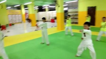 鹅湖宏杰跆拳道馆        郑教练