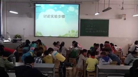 湘科版四年级科学下册第1单元植物的一生1播撒希望的种子-李老师(配课件教案)