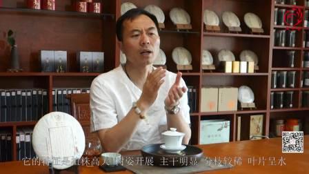 凤宁茶学堂第七课云南茶种的介绍普洱茶滇红茶茶树茶种