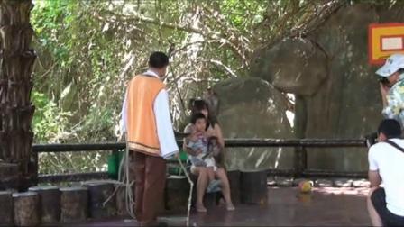 海南省陵水黎族自治县南湾猴岛一日游