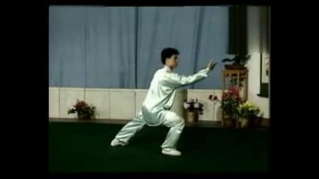 太極王子陳思坦精彩演練40式太極拳