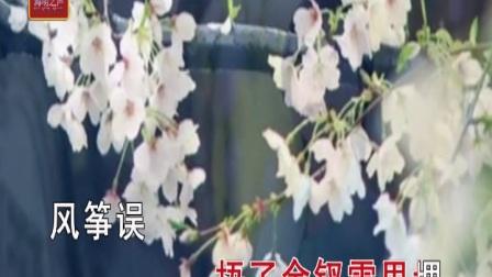 刘珂矣-风筝误   KTV版字幕