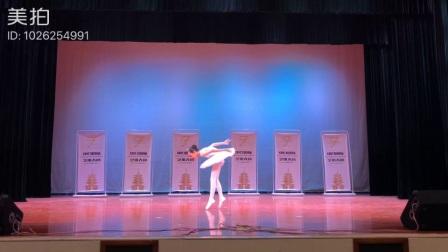 楚雄市小天鹅舞蹈培训中心,芭蕾舞《天鹅》
