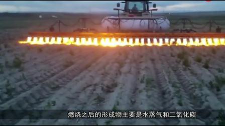 最霸气除草, 开喷火车一路烧过去, 30个喷火口, 连根除草还能增肥