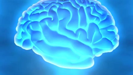 Brain food  Super learning fast skills for memory recall, study exams