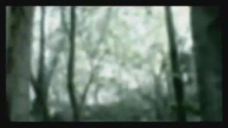 Amon Amarth - _The Pursuit of Vikings_ Metal Blade