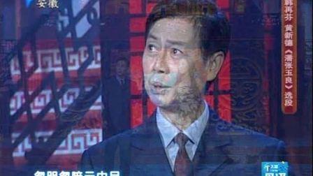 纪念改革开放30周年黄梅戏电视剧回眸5