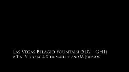 5D2  GH1 拉斯维加斯贝拉吉奥喷泉之夜