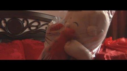 原安徽卫视主持人--李黎的婚礼视频