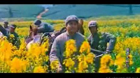 电影《大转折之挺进大别山》(孙飞虎 卢奇 傅学诚)插曲片段(大结局)