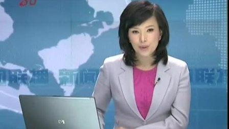 新闻联播 与国家电网公司总经理会谈 0410
