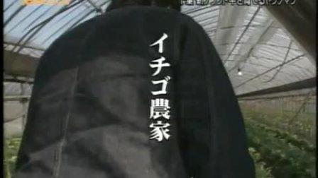 『田舎に泊まろう!』'10.3.28 (3-3) 西城秀樹