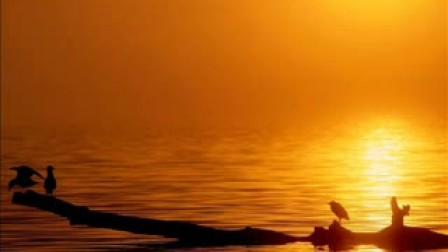自己弹的古筝曲 渔舟唱晚