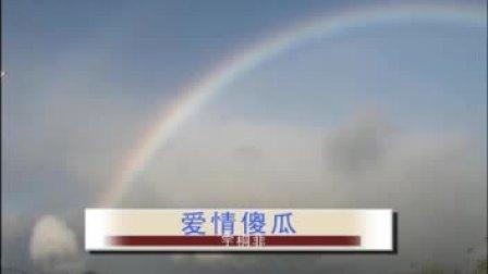 爱情傻瓜[KTV] 宇桐非
