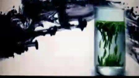 竹叶青茶叶视频