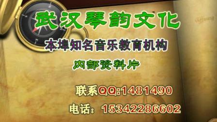 GHS琴弦Mike Orlando中国演示会武汉站(武汉琴韵文化协办)