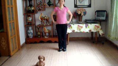 学跳健身舞海棠姑娘