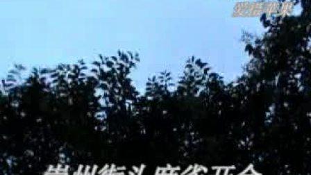 【优酷拍客苹果】  女贞树开花,引来麻雀开会