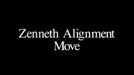 Penguin Magic - Zenneth Alignment Move Explanation