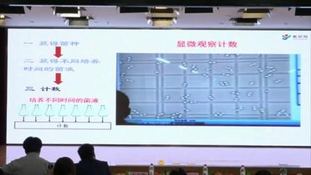 初中生物《種群數量的變化》說課 北京馬會放