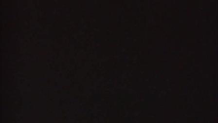 Photodiary 87【日本】伊藤高志实验映像