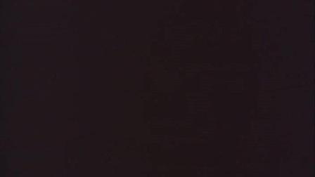 Venus 【日本】伊藤高志实验映像