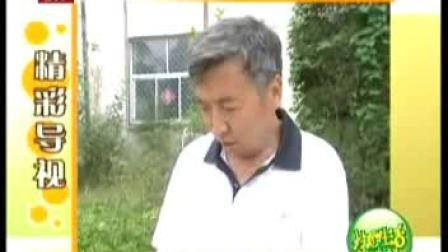 番石榴鲜莲子炒虾仁金针菇牛肉卷西瓜冰棍娃娃20100818
