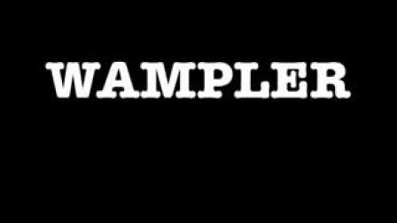 Wampler Plextortion 05