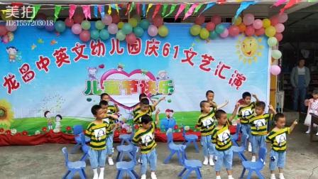 龙昌中英文幼儿园中班