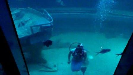 北海海底世界美人鱼表演