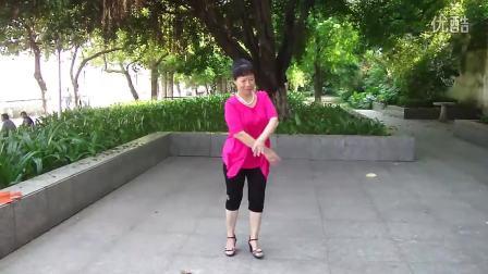 广场舞--尕撒拉--刘仕环专辑