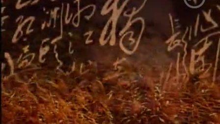 《诗人毛泽东》第20集 精神长河