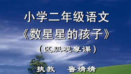 鲁婧婧执教小学二年级语文《数星星的孩子》区级观摩课