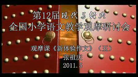 《新体验作文》五年级语文3特级教师张祖庆